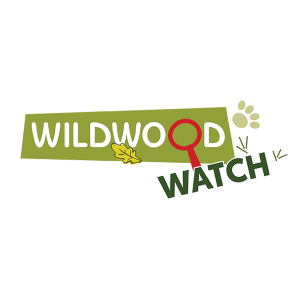 wildwood watch logo latest